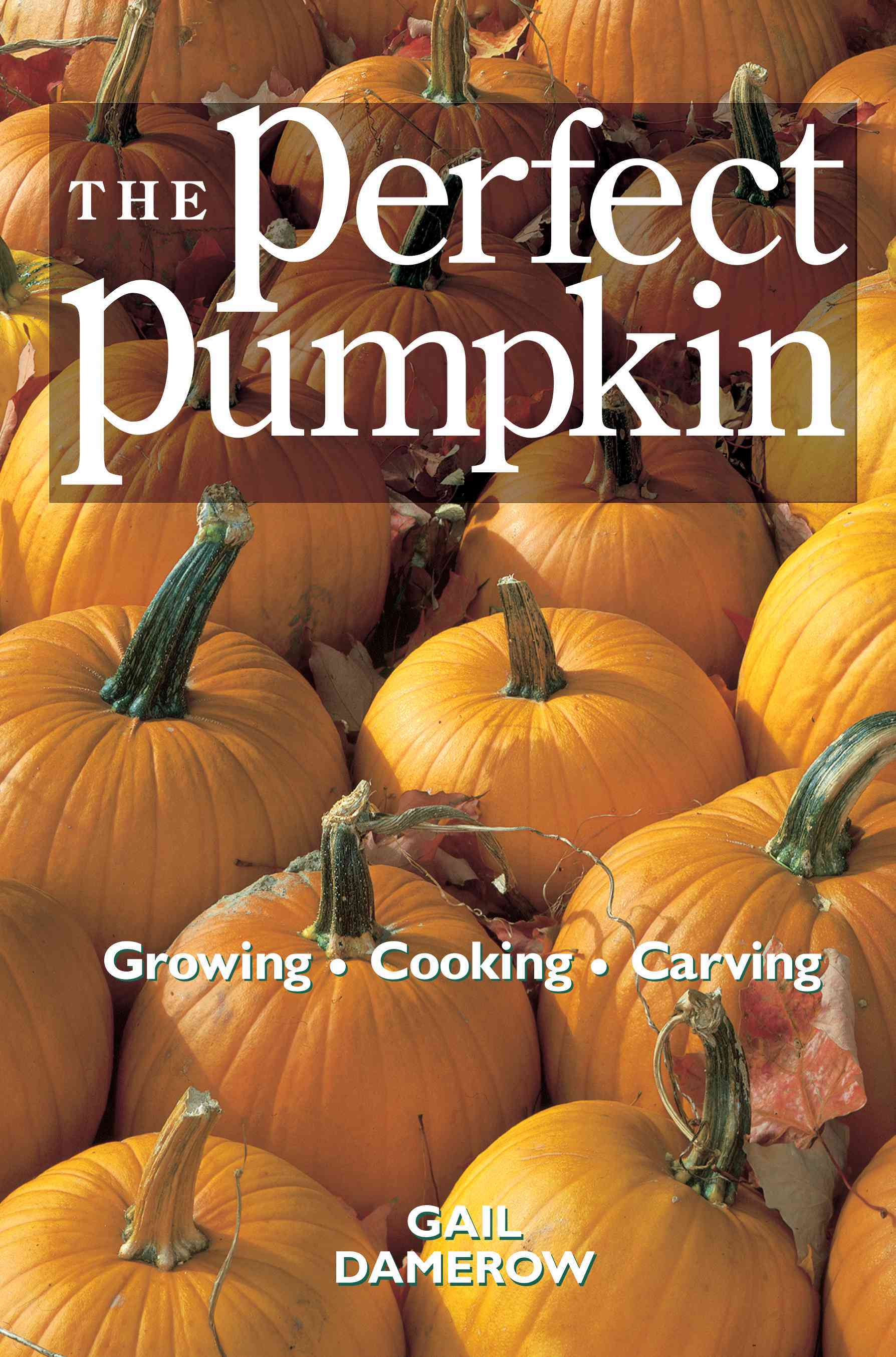 The Perfect Pumpkin By Damerow, Gail